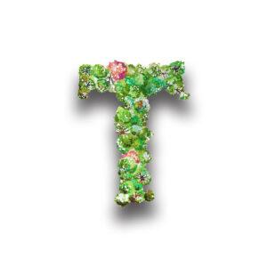 Weingut Tischler Icon T